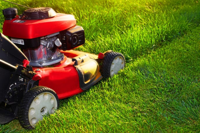 red lawn mower, green grass